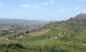 Vale da Vilariça une-se em cooperativa para aumentar produção