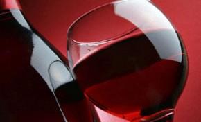 IPB e Valpaços unem-se por futura Casa do Vinho