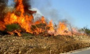 Melhor distribuição de meios para combater os incêndios