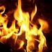 fogo[1]