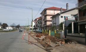 Árvores da rua Viriato Martins arrancadas