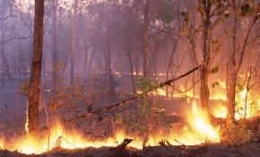 Incêndio na Serra de Bornes deflagra em zona de difícil acesso
