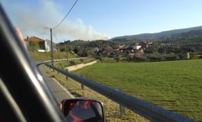 Incêndio na Serra de Bornes dizimou dois hectares de floresta