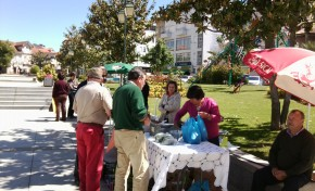 Feira das Artes e dos Sabores de Macedo de Cavaleiros estimula vendas de produtos locais