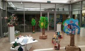 Agrupamento Vertical de Escolas de Macedo de Cavaleiros celebra o Mês do Ambiente