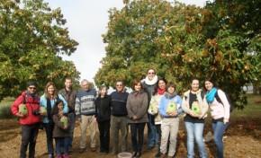 Turistas do outro lado do Atlântico à descoberta da castanha transmontana
