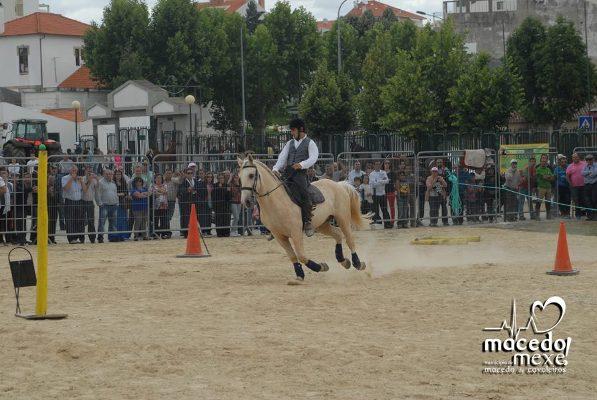 Feira Agrícola de Trás-os-Montes pode emergir em Macedo de Cavaleiros