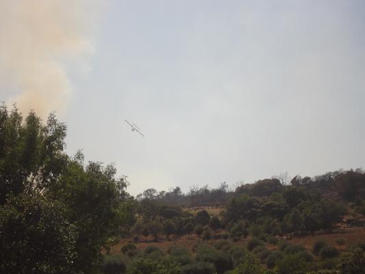 Informação de última hora – Incêndio de concelho de Macedo está dominado