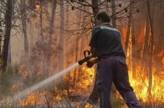 Detidos pelo crime de incêndio florestal no Distrito de Bragança