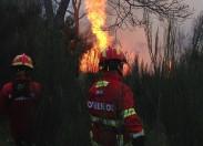 Fase crítica de combate a incêndios é antecipada, e começa hoje