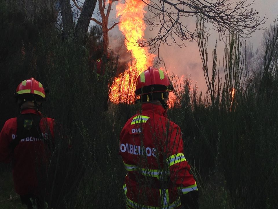 28 bombeiros do distrito de Bragança partiram para ajudar em Góis