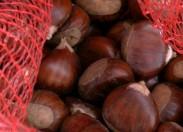 Suspeitos de furtar castanha surpreendidos por populares em Penhas Juntas (Vinhais)