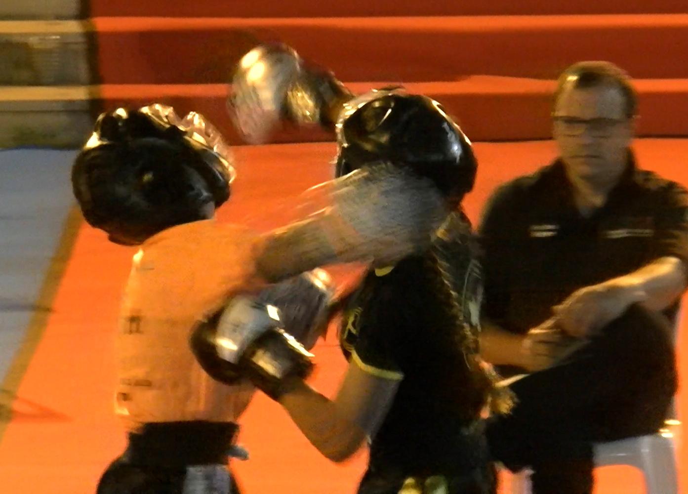 Este ano não há Gala de Kickboxing em Macedo de Cavaleiros