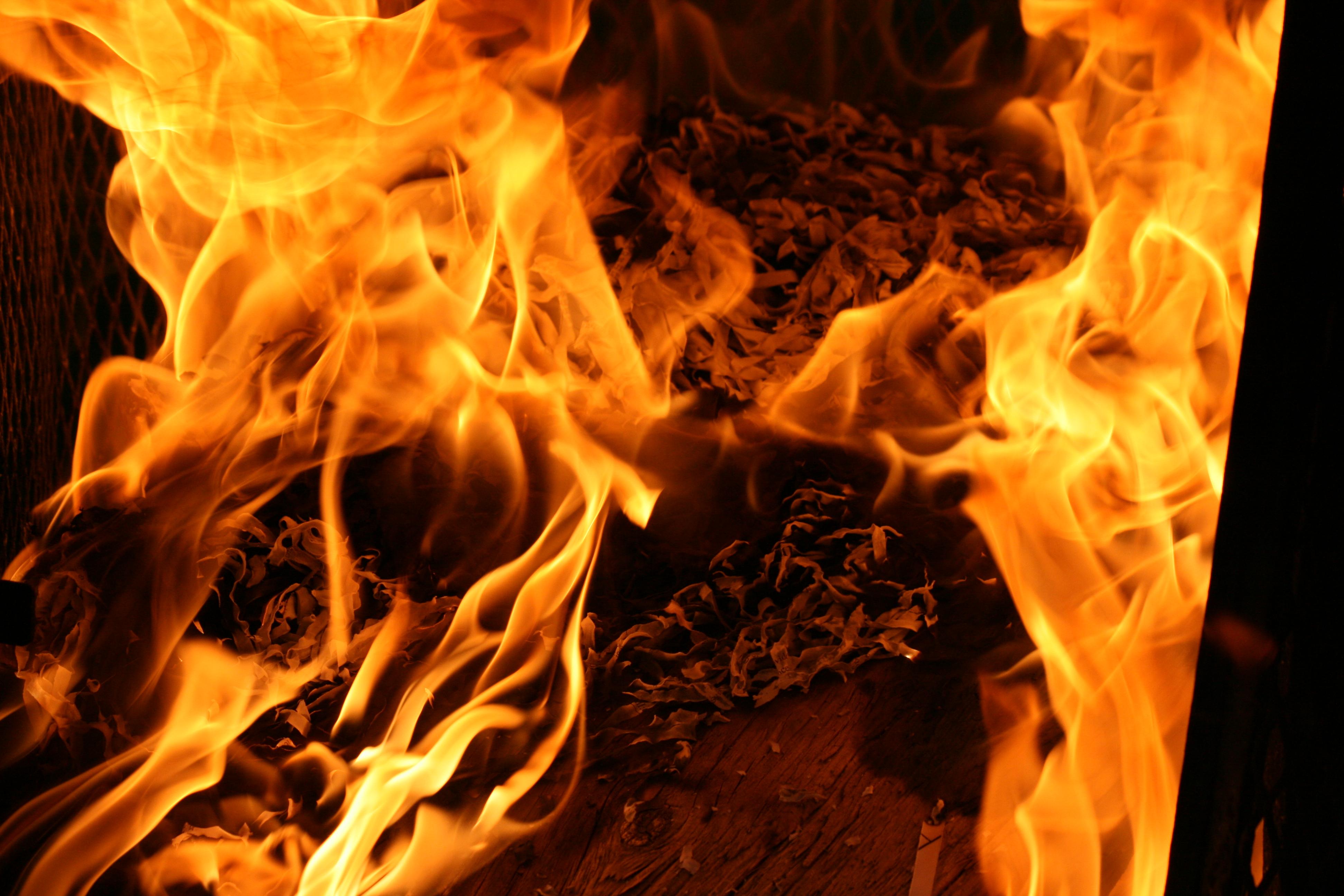 Soldados da Paz lutam contra as chamas em Alfândega da Fé e Macedo de Cavaleiros esta tarde