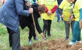 ONDA LIVRE TV - Dia Mundial da Árvore e da Floresta