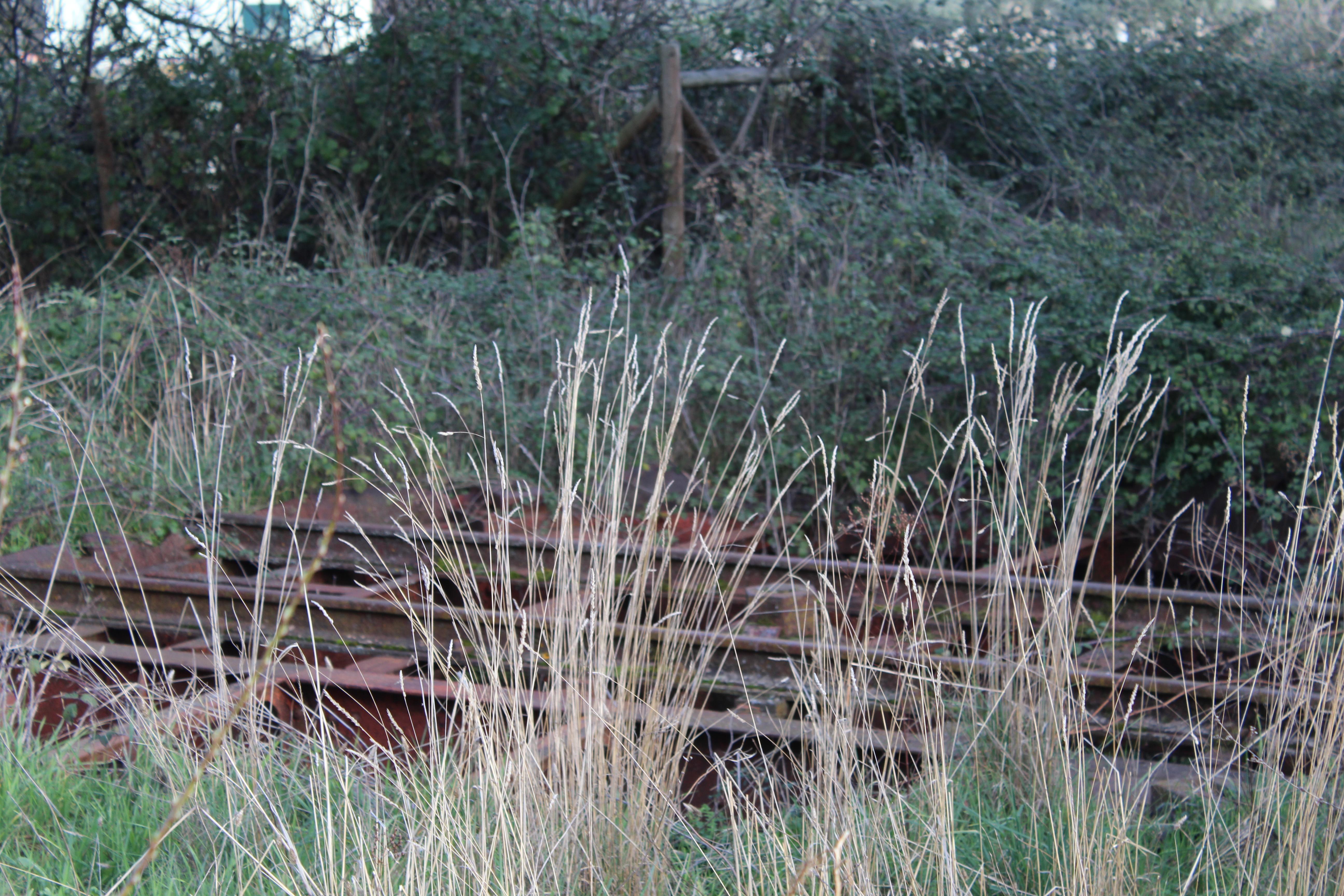 """Linha férrea transformada em ecopista em Macedo é """"um complemento"""" aos planos para o concelho"""