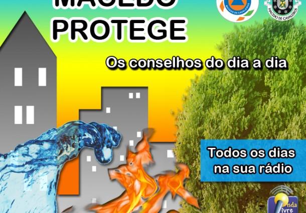 Rubrica Macedo Protege | A Vespa da Galha