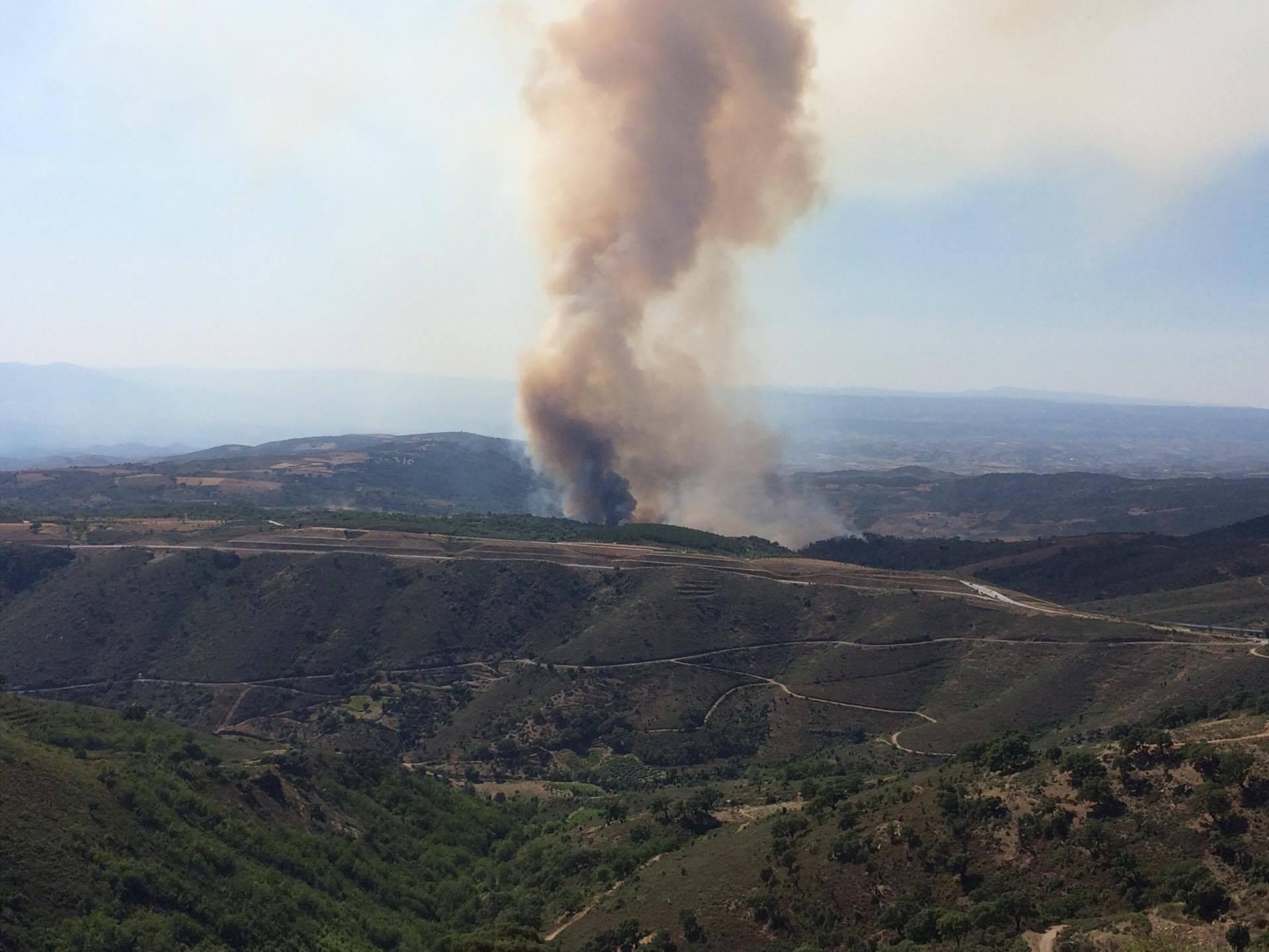 Incêndio em Vale de Asnes mobiliza 4 meios aéreos