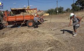ONDA LIVRE TV – Morais a manter a tradicional Ceifa e Malha do cereal