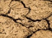 Apoios do governo para zonas de seca alargada ao distrito de Bragança