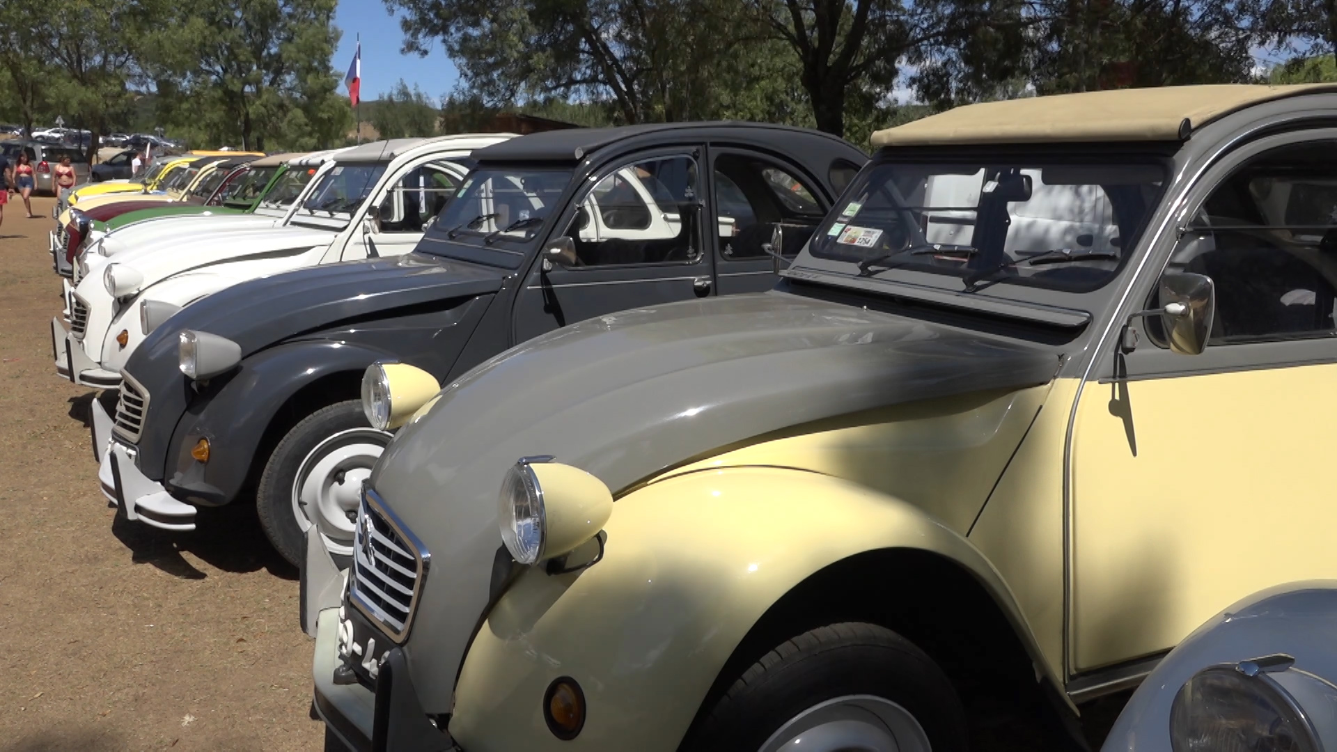 Carros clássicos e de matrículas internacionais passaram hoje pelo concelho
