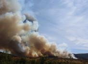 Incêndio lavra mato em Castelãos