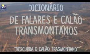 """ONDA LIVRE TV - """"Dicionário dos Falares e Calão Transmontanos"""""""