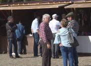 Figo e azeite em destaque durante o fim-de-semana no Lombo