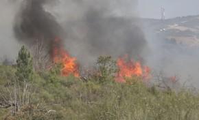 Incêndio que lavra desde o início da tarde em Podence já está em fase de resolução