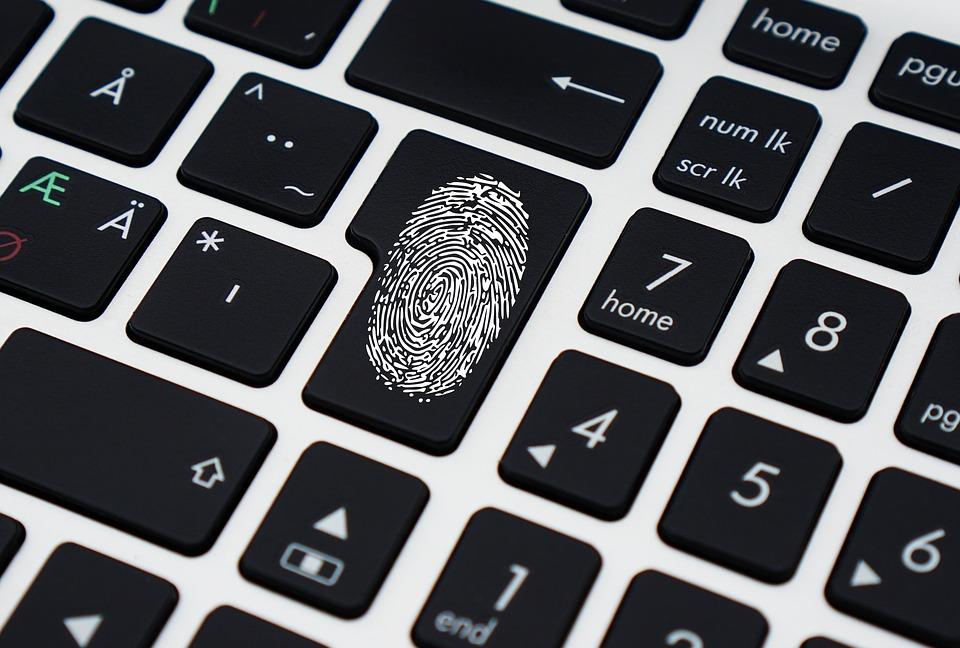 Detido por furtar equipamentos e programas informáticos