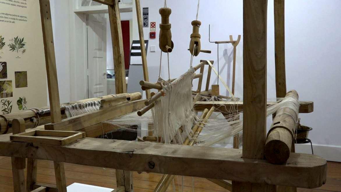 Bragança, um distrito com história na produção de seda