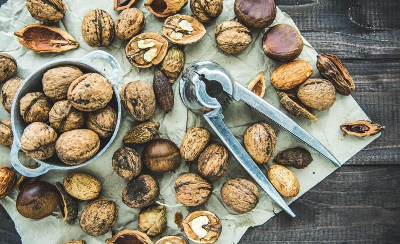 Desenvolvimento do setor dos frutos secos na região deve-se em grande parte à ciência e inovação