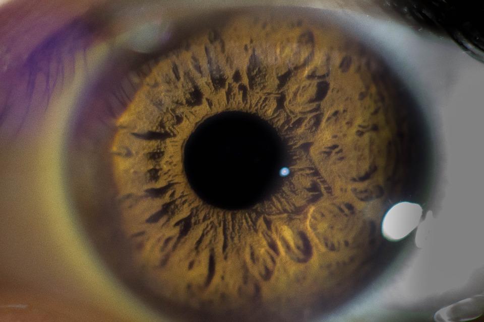O Hospital de Proximidade de Lamego retomou este mês a realização de cirurgias oftalmológicas