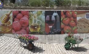ONDA LIVRE TV - Feira do Vinho e dos Morangos em São Pedro Velho 2018