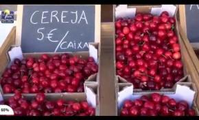 ONDA LIVRE TV - Lamas promove I edição da Festa da Cereja