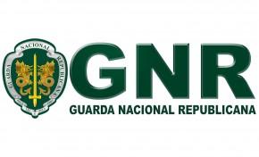 Dois homens detidos no concelho de Bragança por caça ilegal