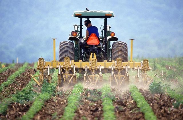 Amanhã, cerca de 200 agricultores transmontanos vão contribuir para alertar o Governo sobre os problemas do setor