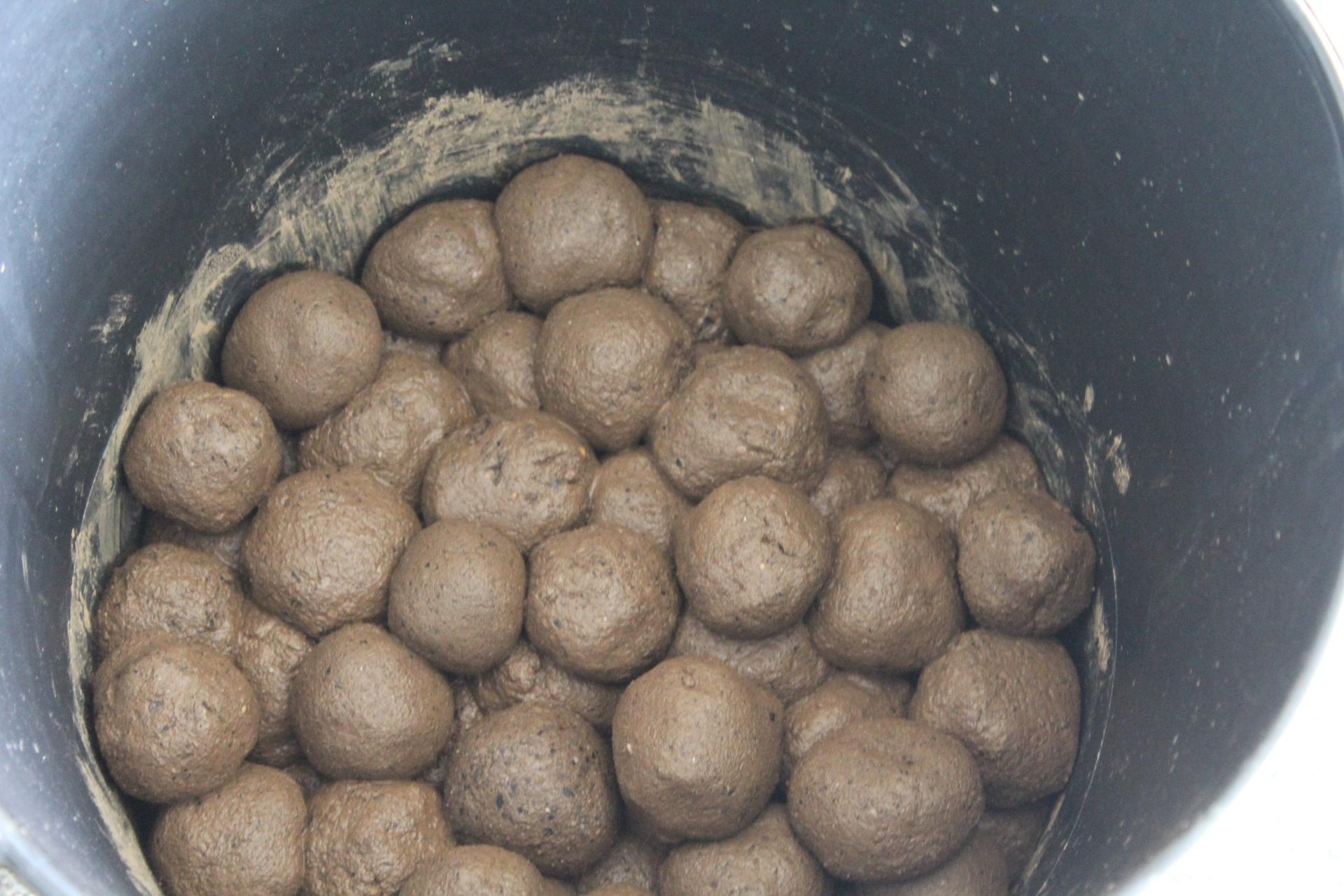 Alunos de Macedo criam bolas de sementes para ajudar a reflorestar zonas ardidas do concelho