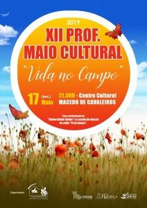 cartaz maio cultural