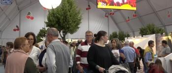 ONDA LIVRE TV - Festa da Cereja de Alfândega da Fé