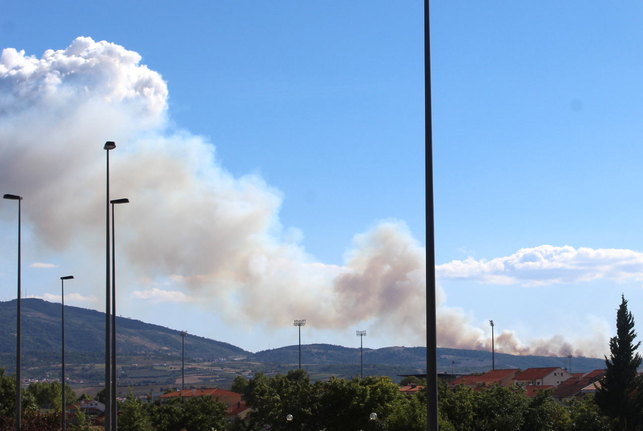 Incêndio mobiliza mais de 80 operacionais em Vale de Asnes (Mirandela)