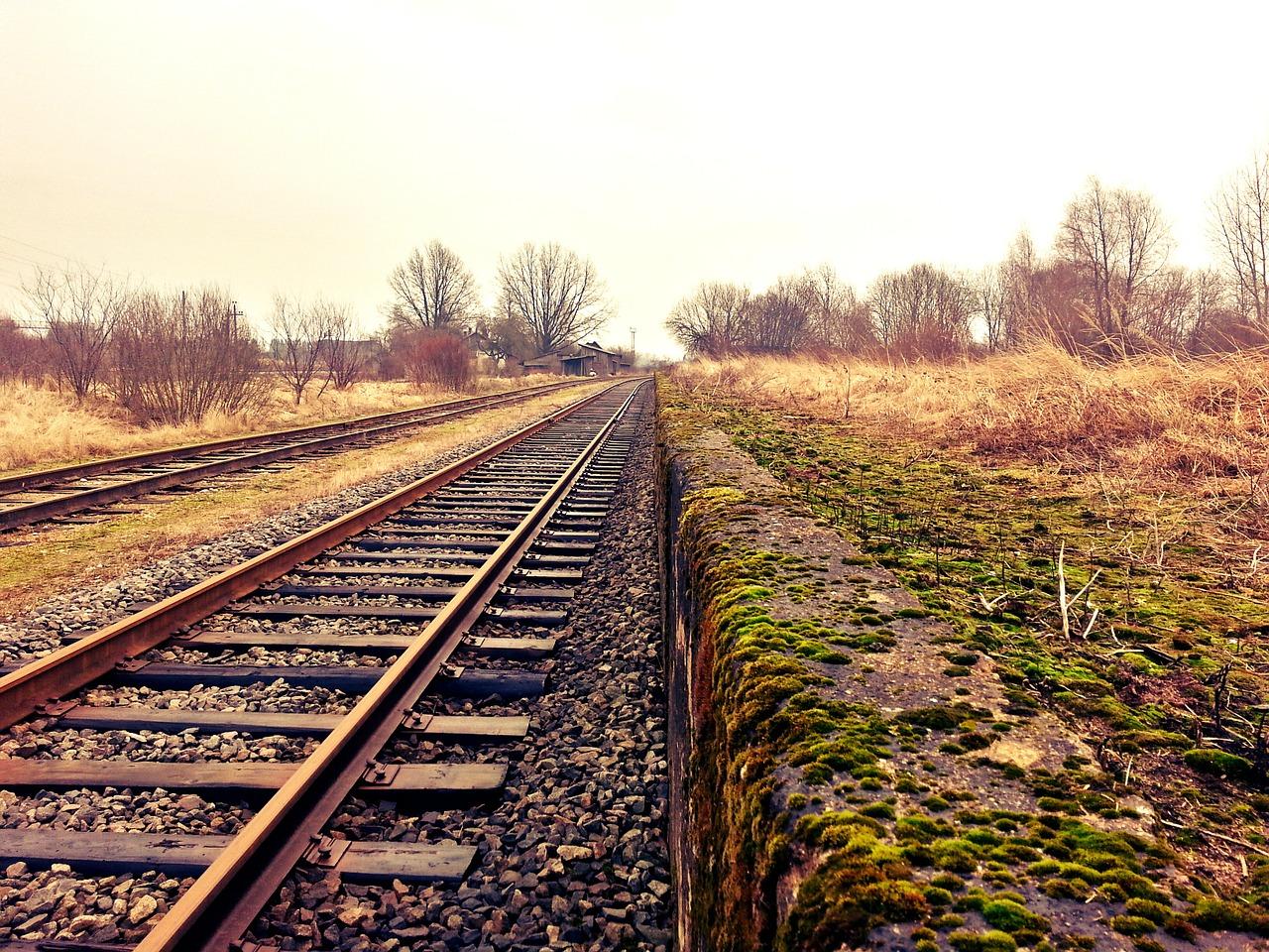 """Movimento cívico """"Tua's"""" defende investimento na via ferroviária, especialmente em Trás-os-Montes"""