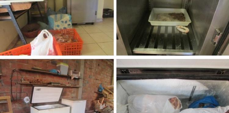 ASAE e PSP encerram fábrica de enchidos em Bragança com produtos estragados