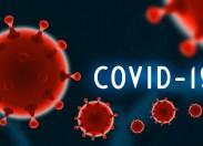 12 casos de Covid-19 no concelho de Macedo de Cavaleiros. No distrito, já são 109