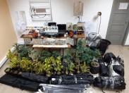 NIC da GNR de Mirandela detiveram dois membros de rede de tráfico de droga (com vídeo)