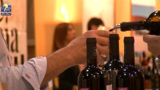 ONDA LIVRE TV – 6º Festival do Vinho do Douro Superior