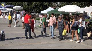 ONDA LIVRE TV – 4º Mercado de Verão