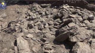 ONDA LIVRE TV – Arqueologia e o concelho