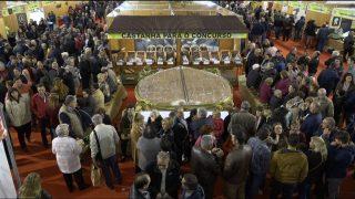 ONDA LIVRE TV – Feira da Castanha de Carrazedo de Montenegro