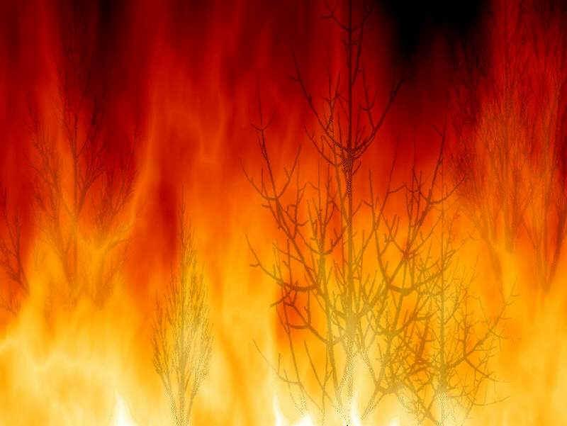 Dois homens detidos por chegar fogo no distrito de Bragança